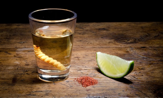 The Guardian: Why mezcal – with a side of worm salt – is finally having its moment