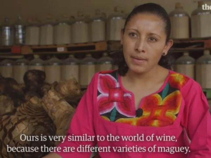 The Guardian: Mezcal: la bebida mística con su propia cultura y tradición